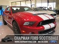 2013 Ford Shelby GT500 20th Anniversary